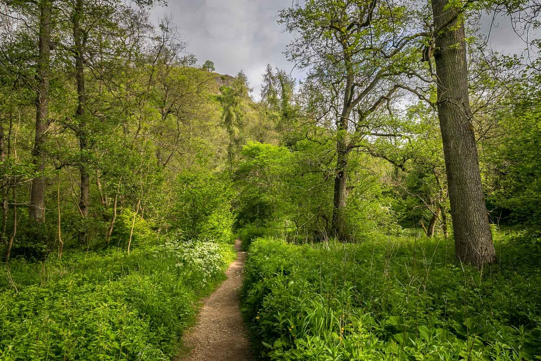 Milldale walk