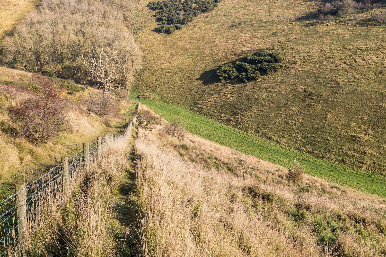 Millington walk