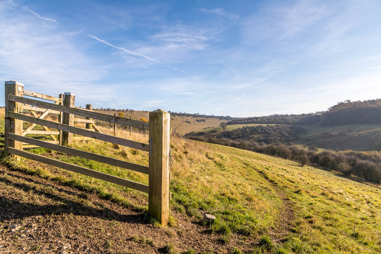 Millington Pasture walk
