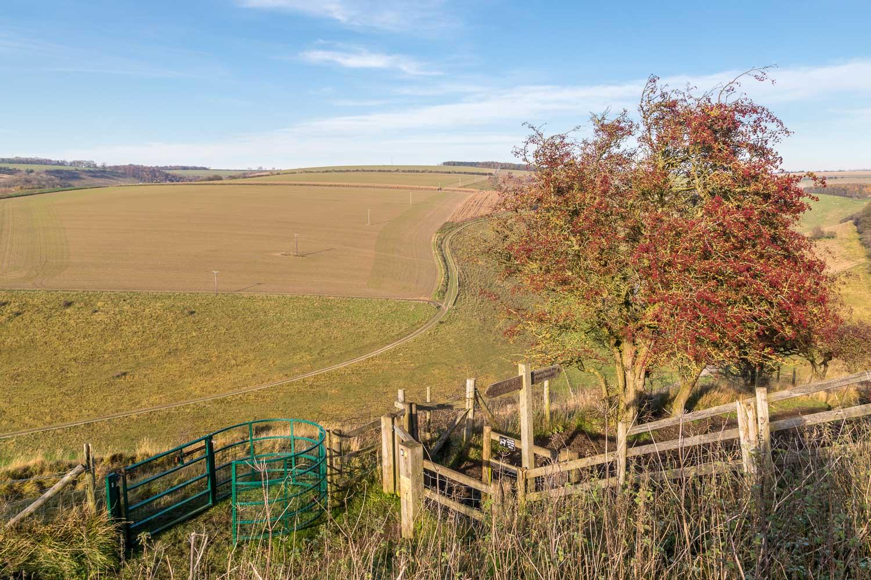Millington Pastures walk