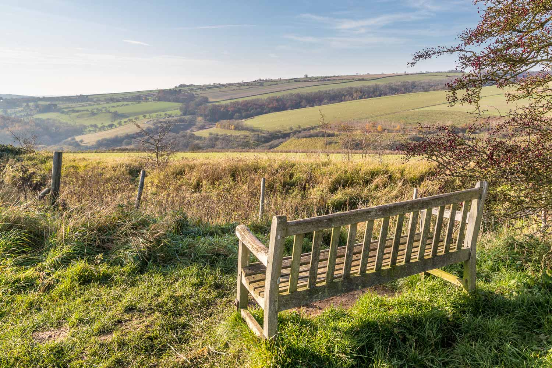 Millington bench