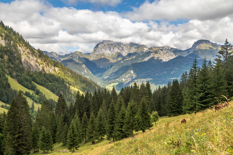 Mont de Grange-38