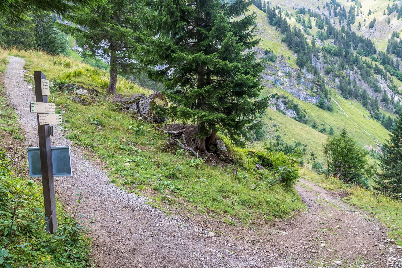 Mont de Grange-39