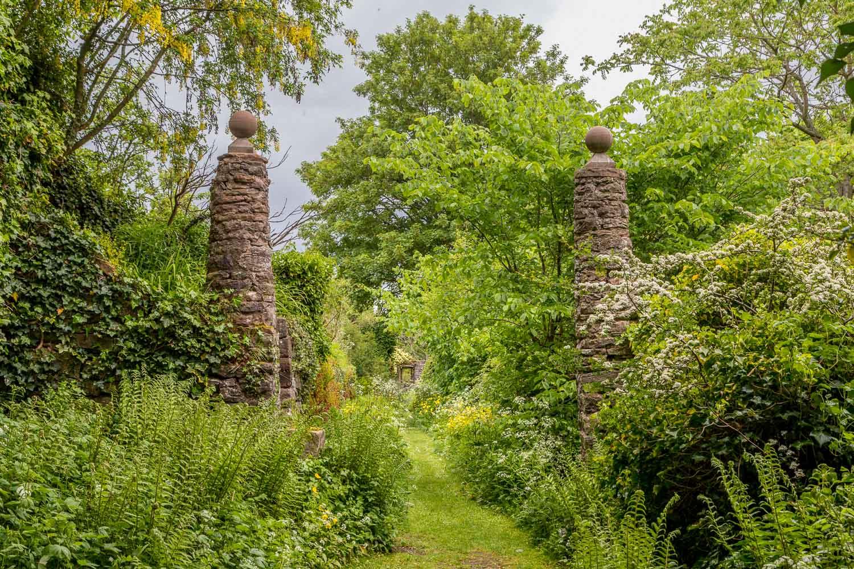 Morland House garden