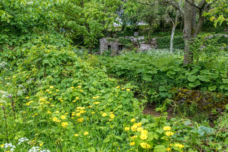 Fort Tumbledown Morland House garden