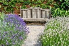 Mottisfont Abbey, Walled  Rose Garden