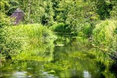 Mottisfont Abbey riverside walk