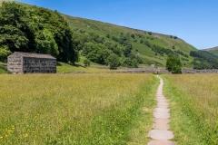 Muker meadow