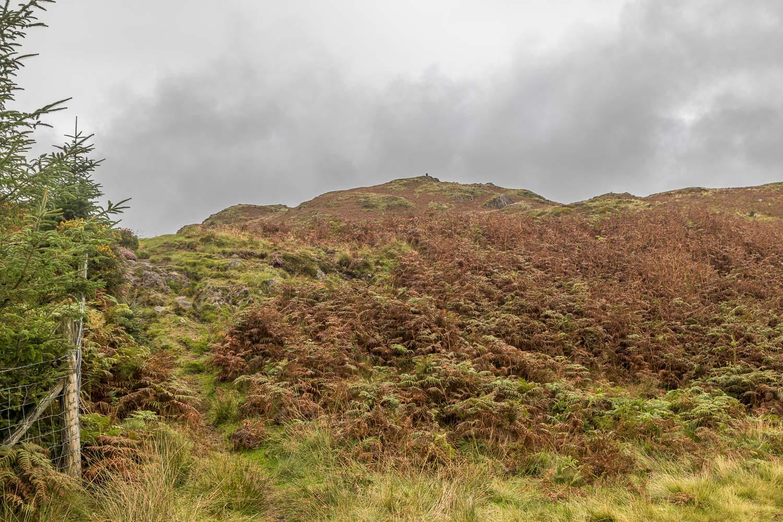 Muncaster Fell, Hooker Crag