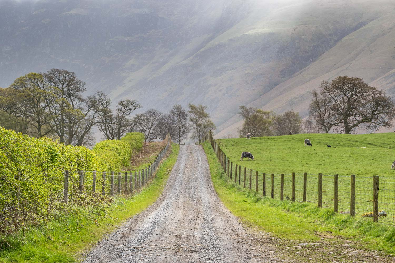 Nether Wasdale walk