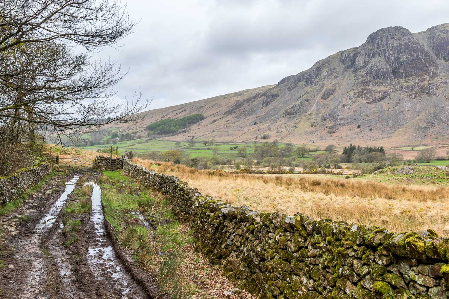 Buckbarrow Wasdale