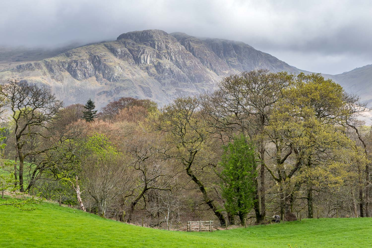Middle Fell Wasdale