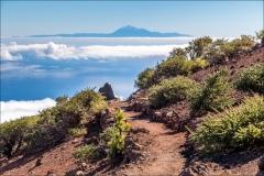 Pico de la Nieve walk, La Palma