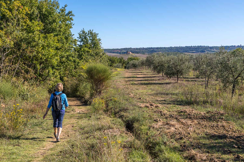 San Quirico to Pienza walk, Val d'Orcia