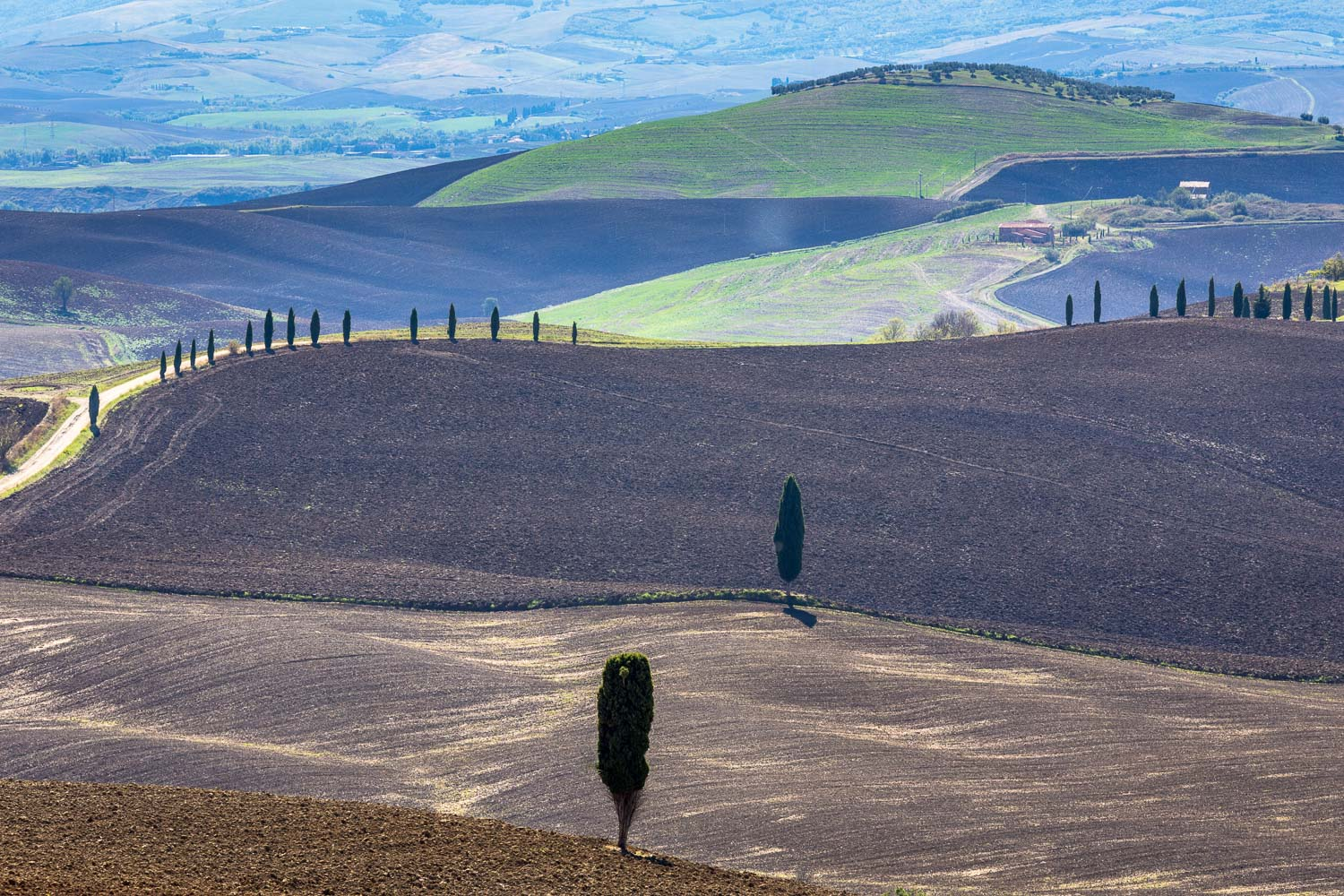 San Quirico to Pienza walk