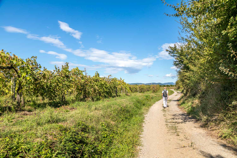 Pitigliano to Sovana walk