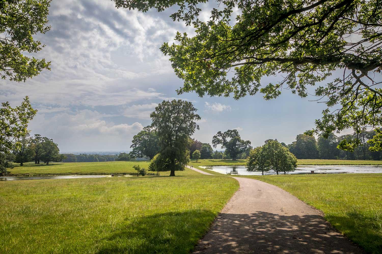 Raby Castle Deer Park