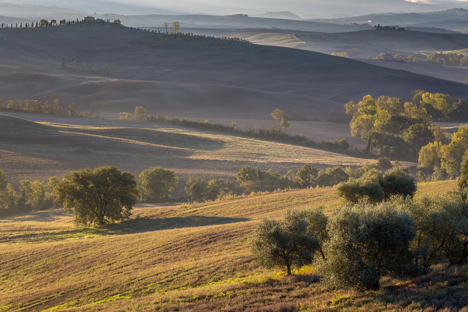 Val d'Orcia dawn