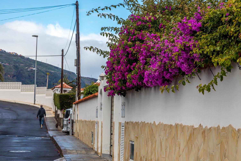 Romantica Tenerife