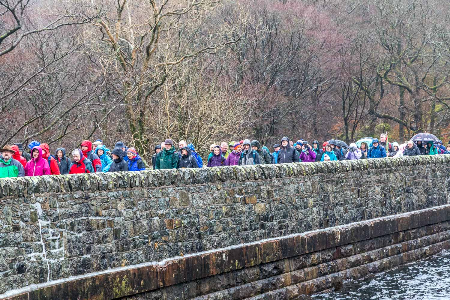 Friends of the Lake District protest Thirlmere