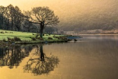 Crummock Water dawn
