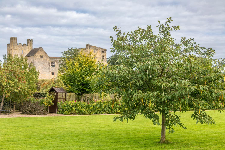 Helmsley Walled Garden, Helmsley Castle