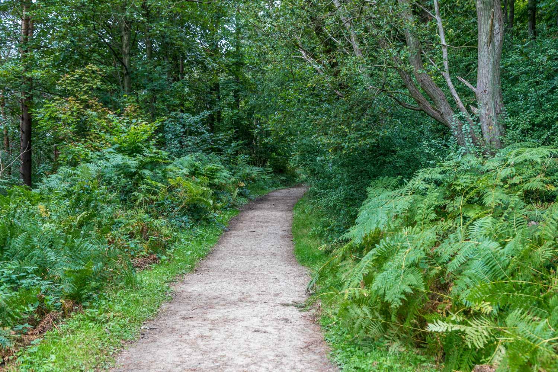 Rievaulx Abbey walk