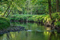 River Derwent Hackness