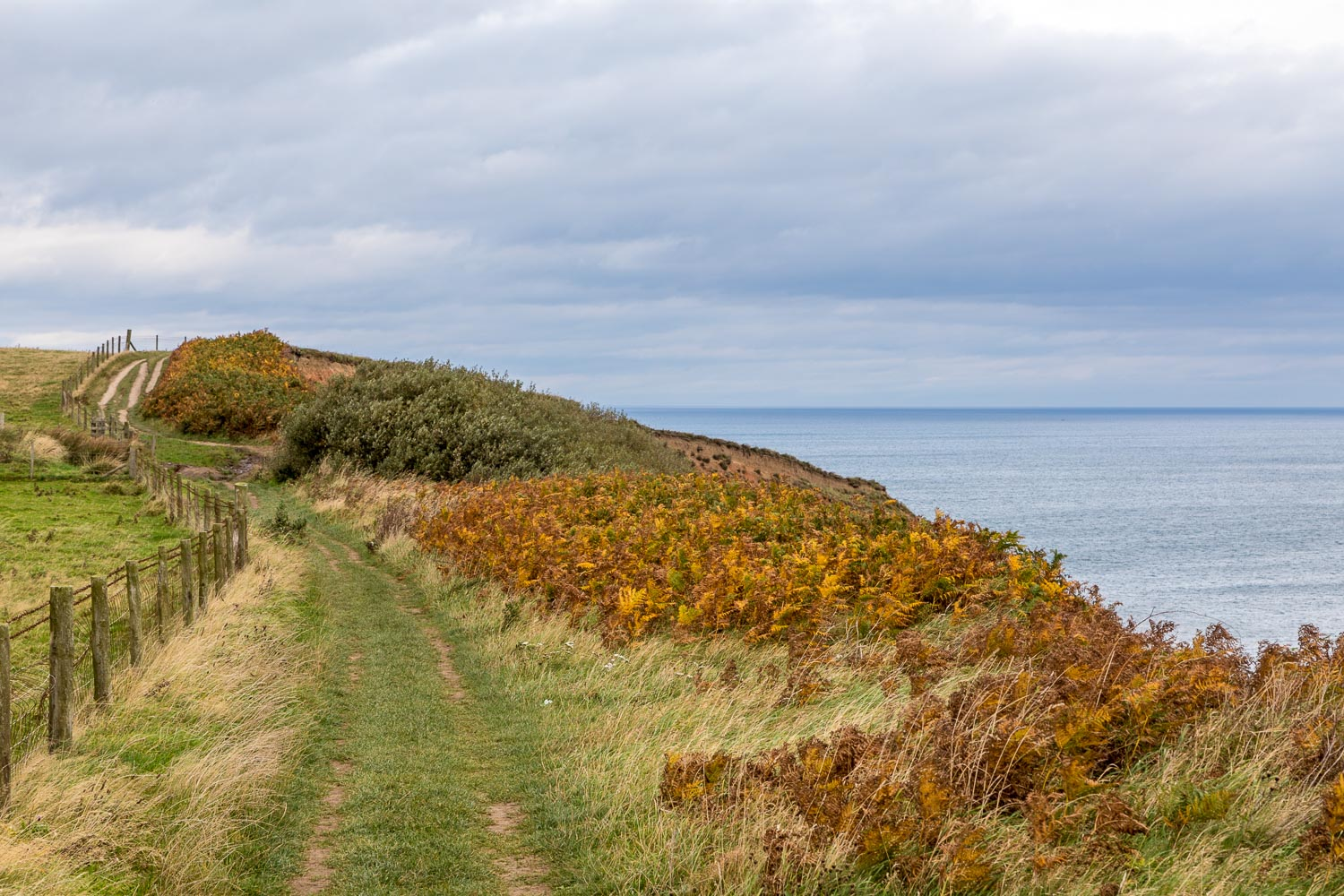 Robin Hoods Bay path
