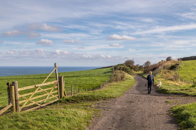 Robin Hoods Bay walk, Cinder Track
