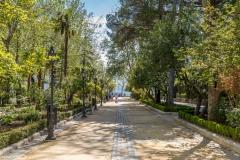 Alameda Gardens, Ronda