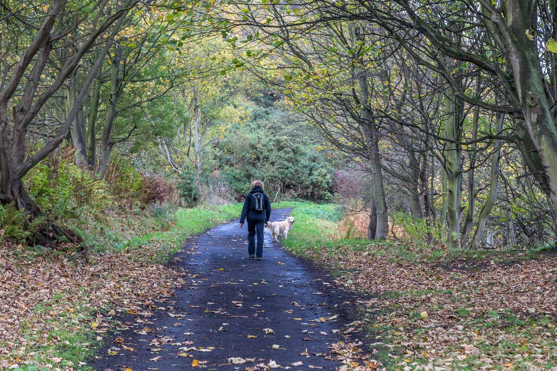 Runswick Bay walk, cinder track