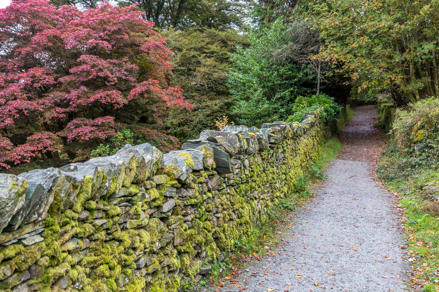 Coffin Road Rydal