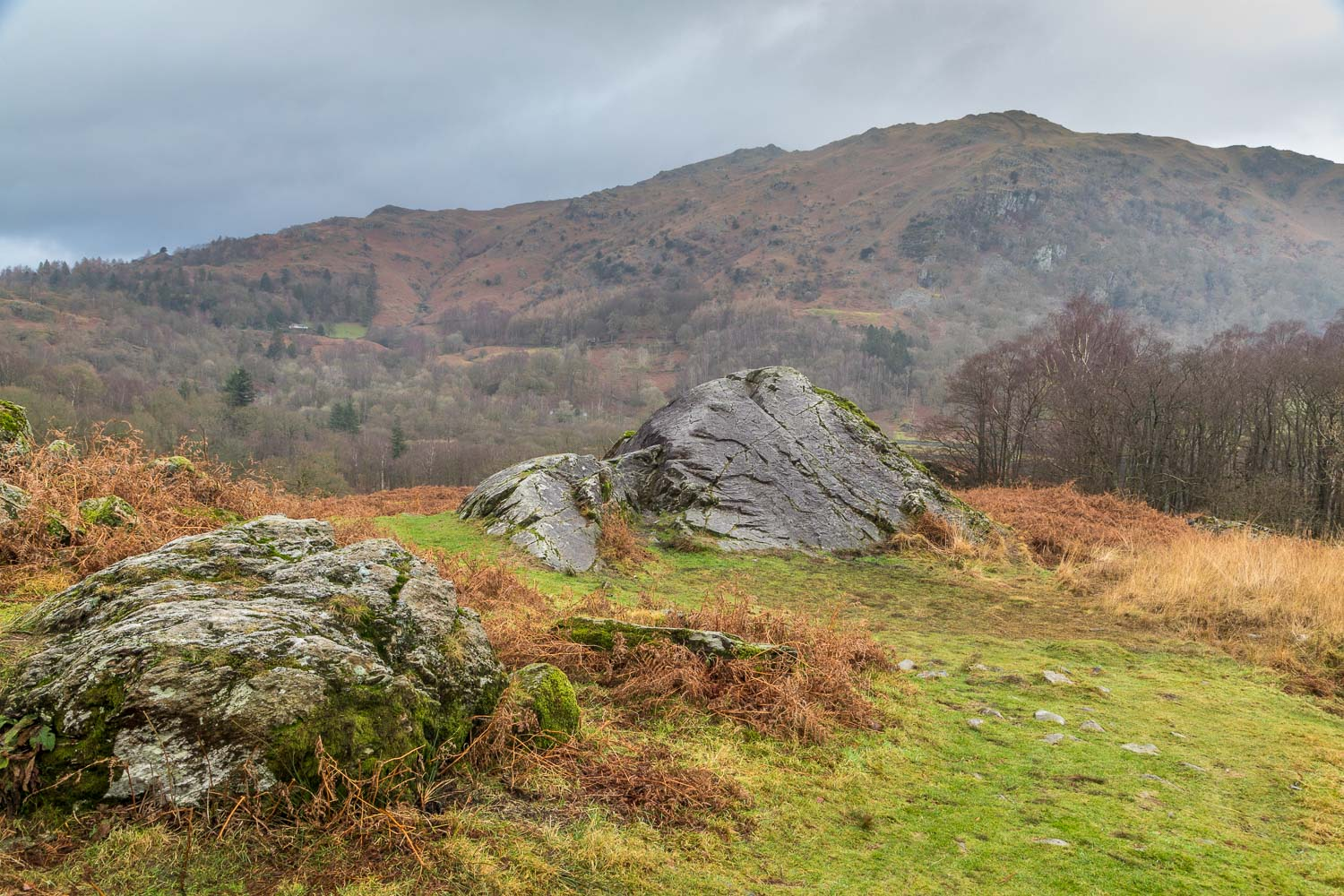 Rydal Water, Loughhrigg Terrace