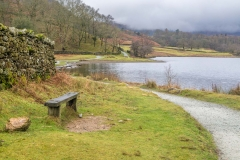 Rydal Water walk