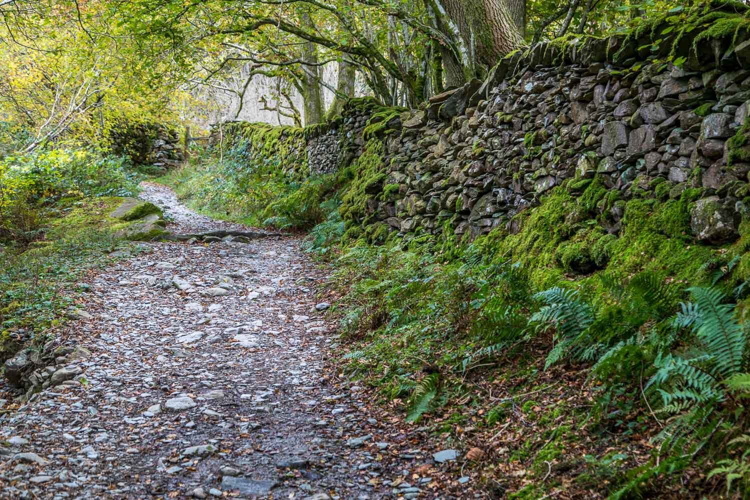 Rydal Water walk, old coffin road