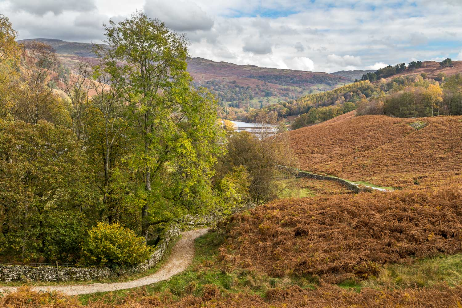 Rydal Water walk, Loughrigg Terrace
