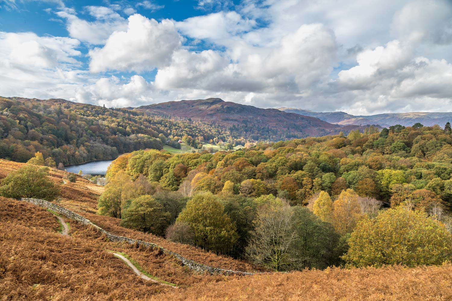 Rydal Water walk, Loughrigg Terrace, Grasmere