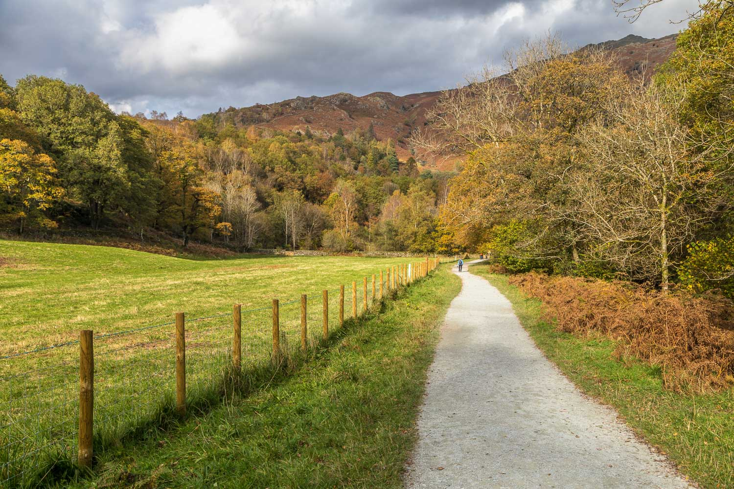 Rydal Water walk, White Moss Common
