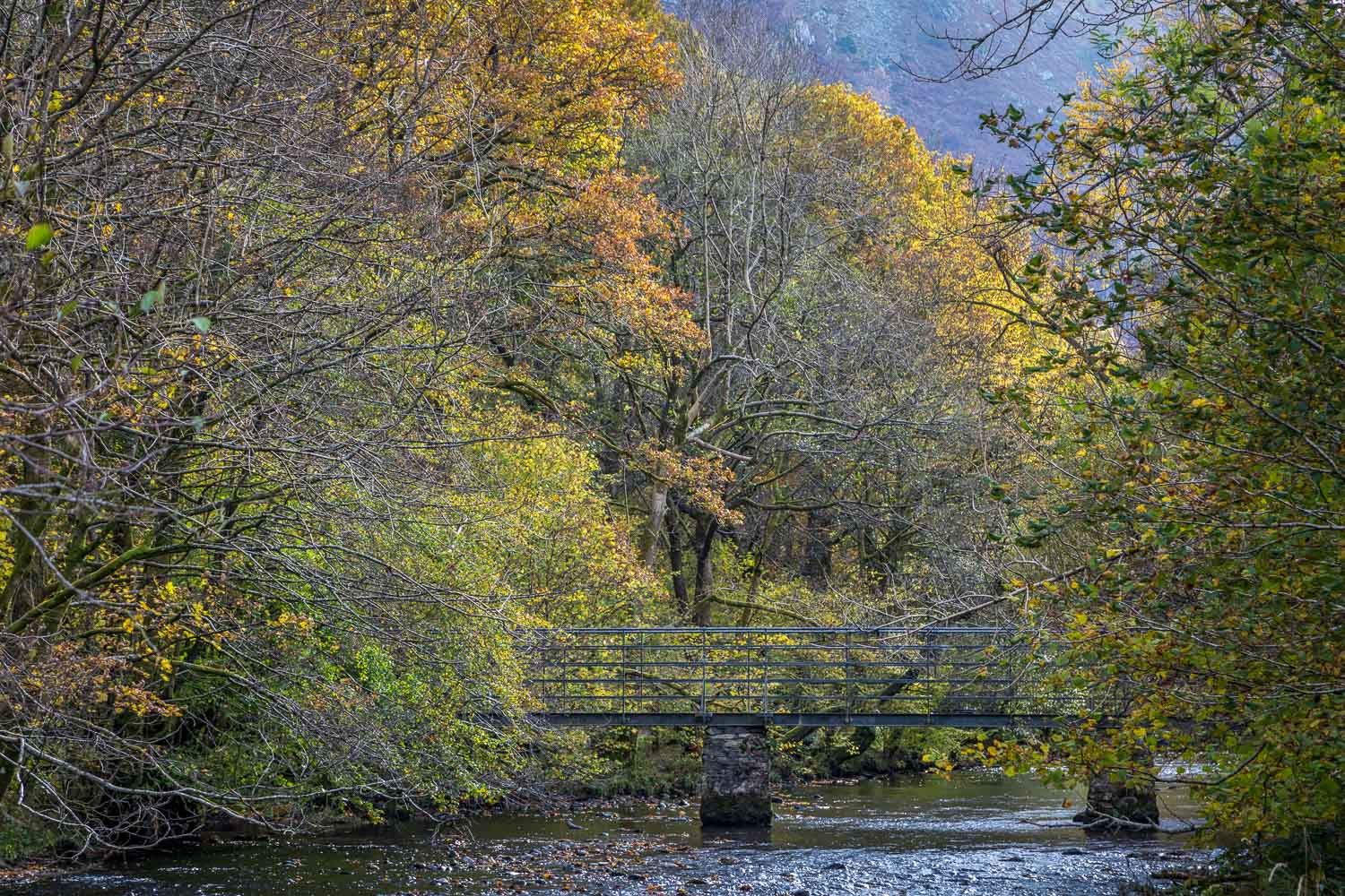 Rydal Water walk, River Rothay