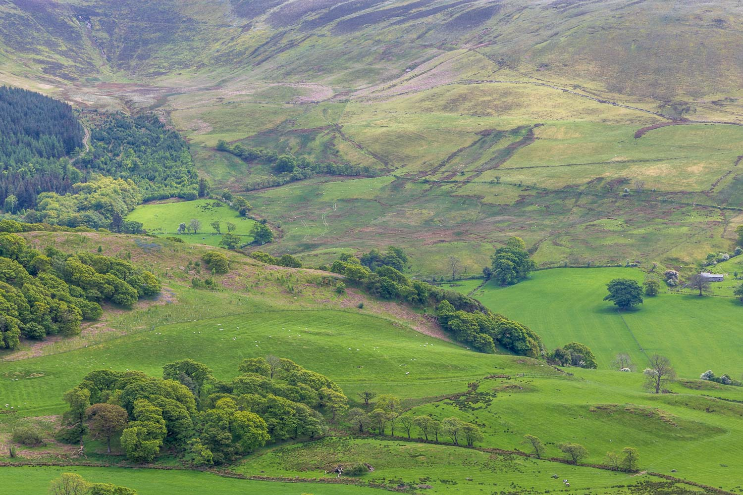 Sale Fell walk