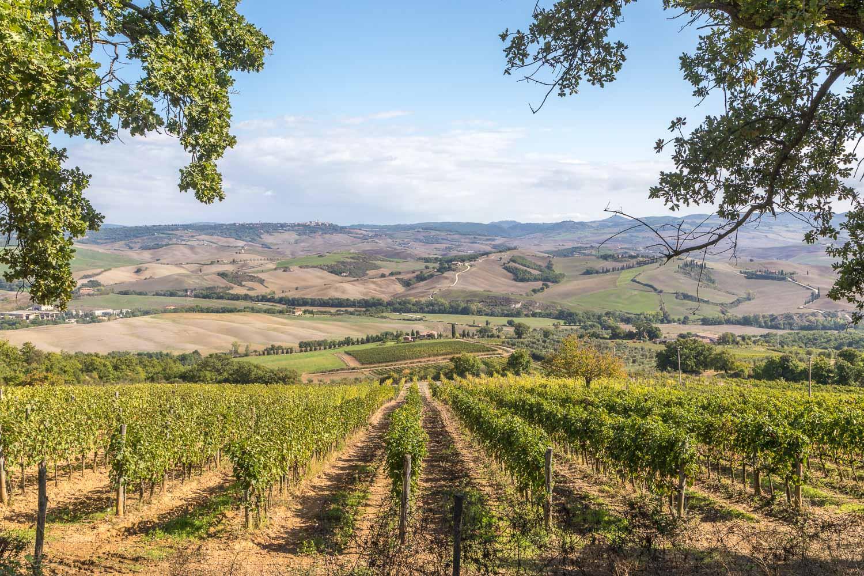 San Quirico d'Orcia to Bagno Vignoni walk