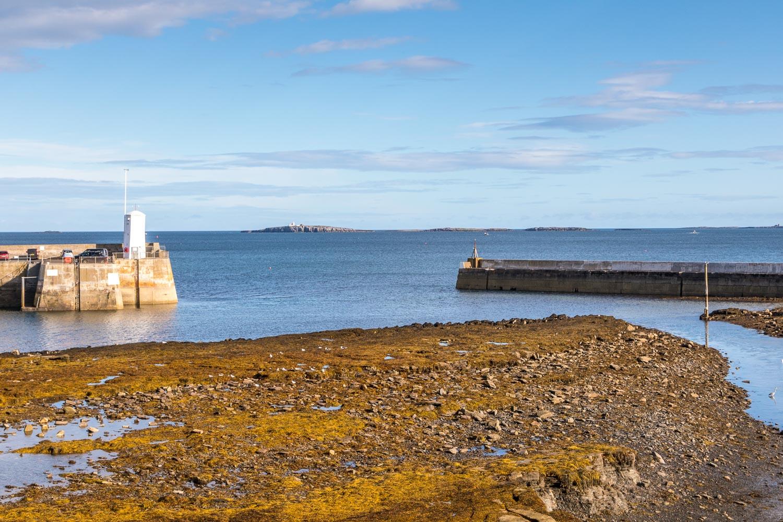 Seahouses walk - Bamburgh Castle - Farne Islands