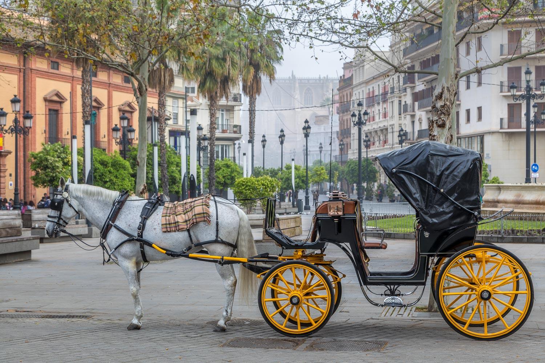 Seville-109