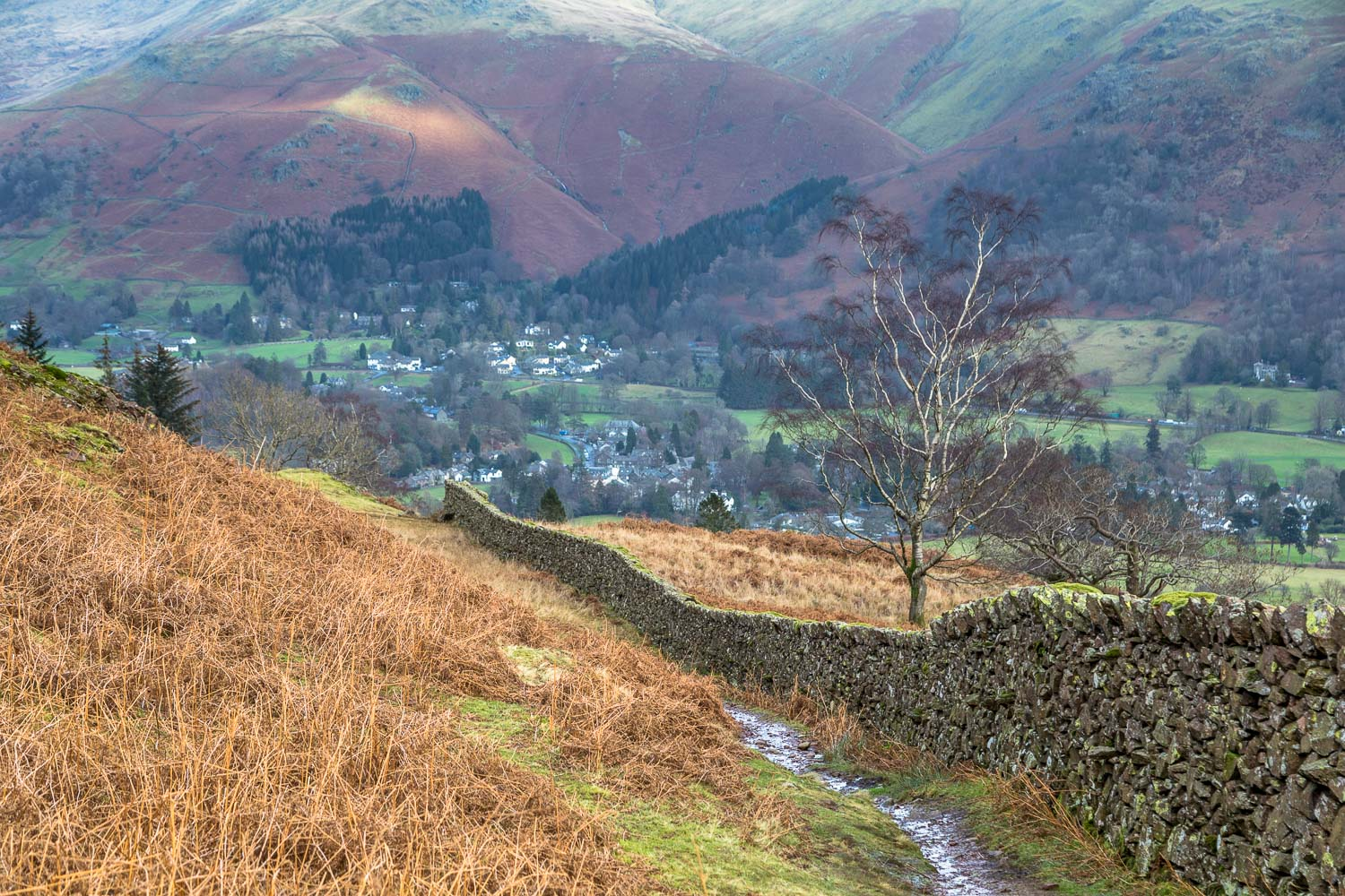 Grasmere, dry stone wall