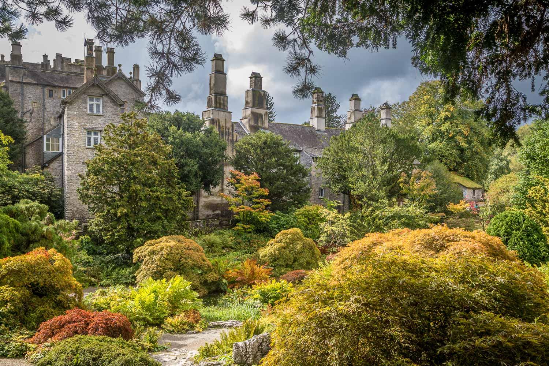 Sizergh Castle limestone garden, acers