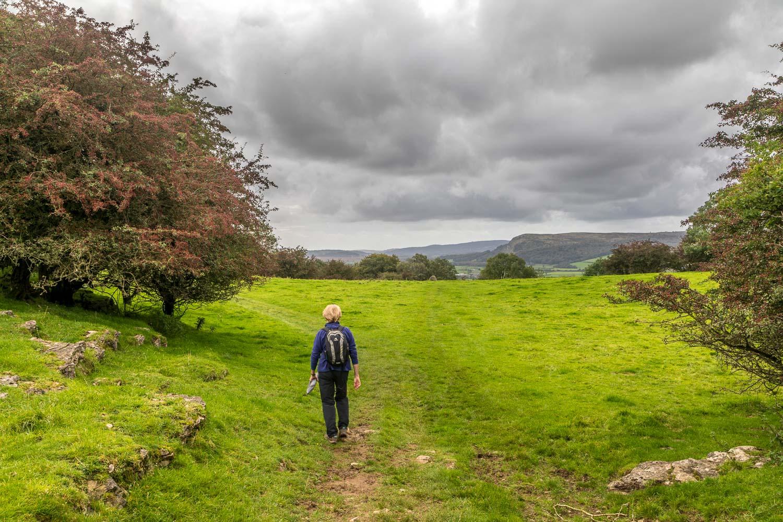Sizergh Castle walk