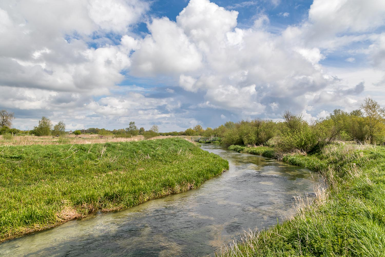 Skerne Wetlands walk