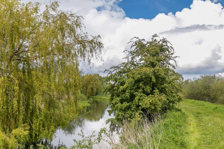 Skerne Wetlands