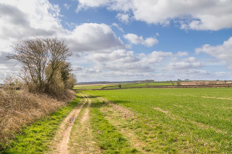 Skidby walk, Howe Hill